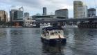 Elija J - 12 person self-drive hire boat Melbourne Boat Hire