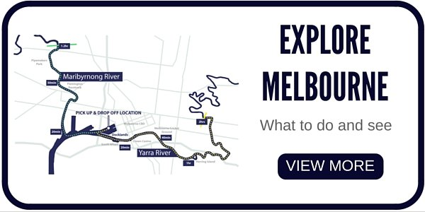 there are lots of things to do in Melbourne, for people  who have hired a boat on the Yarra River