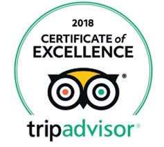 z for zachariah essay trip advisor certificate of excellence